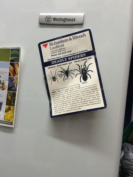 Cartel anunciando los tres tipos de araña mortal que habitan en Lienfield, al norte de Sydney en Australia