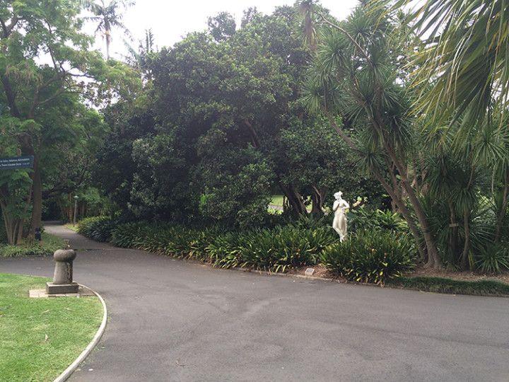 Foto: Eli Zubiria.El Royal Botanic Garden de Sydney, Australia