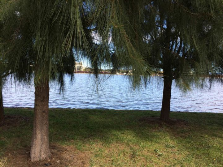 Foto: Eli Zubiria. Parte del paseo de Lake Burley Griffin, en Canberra, Australia.