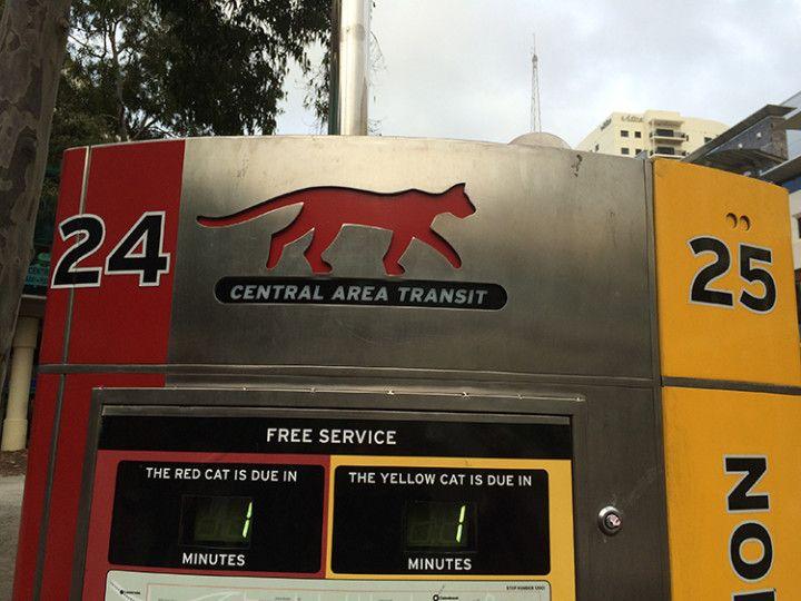 Foto: Eli Zubiria. El CAT es el conjunto de líneas de autobuses gratuitos de la ciudad de Perth, en Australia.