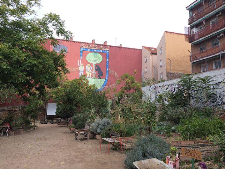 Foto: Eli Zubiria. Huerto Urbano de Lavapiés en Madrid.