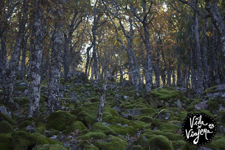 Foto: Eli Zubiria. Subida hacia el pIco Abulagoso, en Sierra Madrona, en Ciudad Real España.